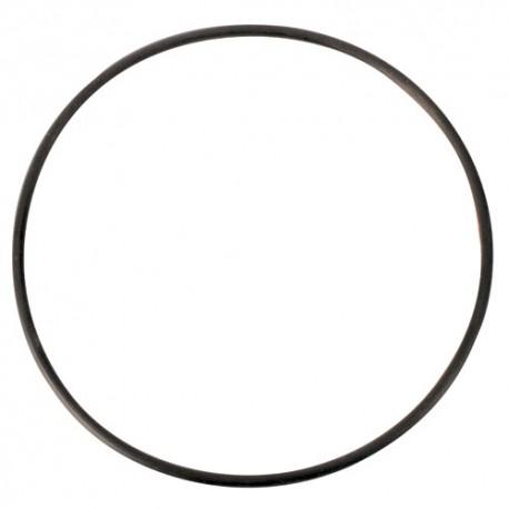 Phosban Reactor O-Ring